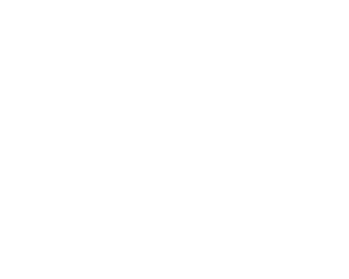 reel services